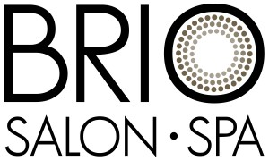 brio_logo2014_blk_stack_5in300dpi copy